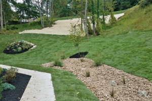 Steep Hill Erosion Control and Landscape