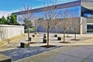 Commercial Patio and Memorial Area