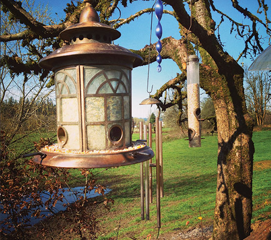 Bird Feeders & Gardening Tools | Frederick Maryland