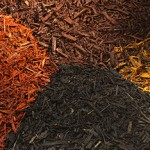 Hardwood Mulch | Frederick Maryland