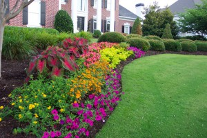 Landscaping Services and Supplies in Frederick Maryland
