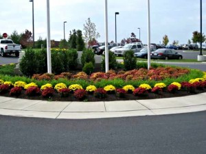 Commercial Landscaping Services in Maryland