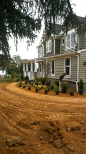 Weed Control and Plants in Frederick Maryland